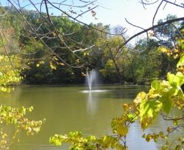 Big Gem Park, Shenandoah Va