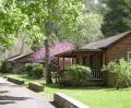 Brookside Cabins in Spring in Shenandoah Valley